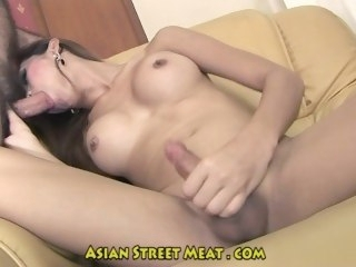 Asian Shemale Starr  transgender